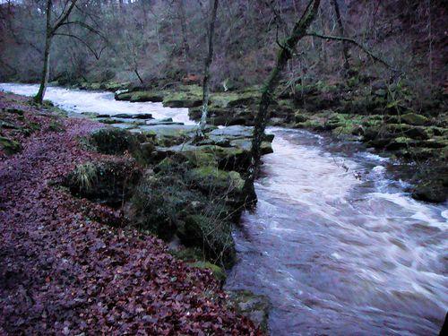 Stridriver