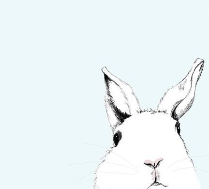 Rabbit_wheresalice_by