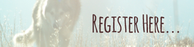 Register here 400px