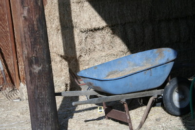 Bluewheelbarrow_1_1